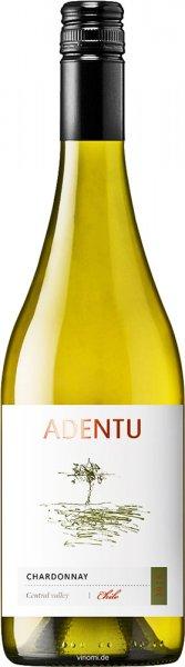 Vina Siegel Viña Siegel Adentu Chardonnay 2020